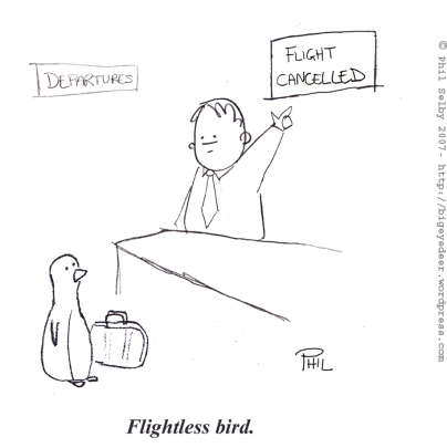flightless-bird.jpg