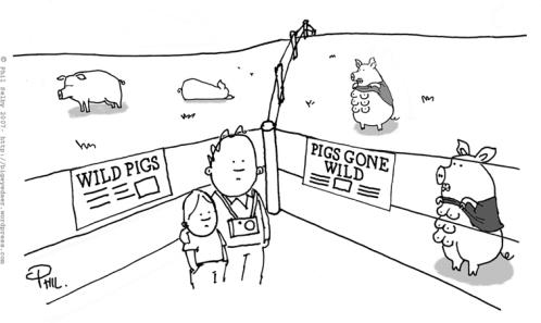 pigs-gone-wild.jpg